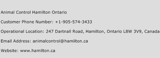 Animal Control Hamilton Ontario Phone Number Customer Service