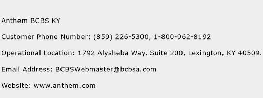 Anthem BCBS KY Number   Anthem BCBS KY Customer Service ...