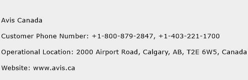 Avis Canada Car Rental Phone Number
