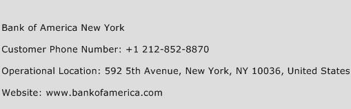 Bank of America New York Phone Number Customer Service