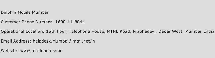 Dolphin Mobile Mumbai Phone Number Customer Service