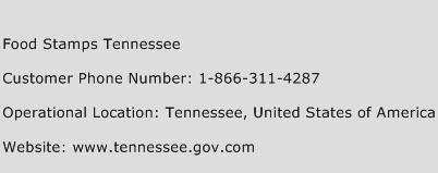 Food Stamps Tennessee Phone Number Customer Service