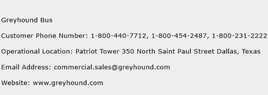 Greyhound Bus Phone Number Customer Service