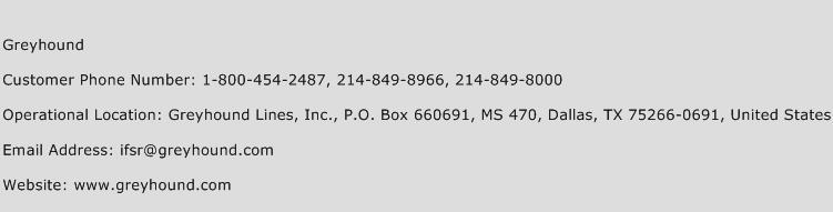 Greyhound Phone Number Customer Service