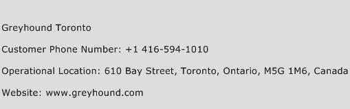 Greyhound Toronto Phone Number Customer Service