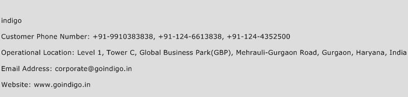 Indigo Phone Number Customer Service