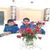 Mtnl Trump Delhi Customer Service Care Phone Number 232021